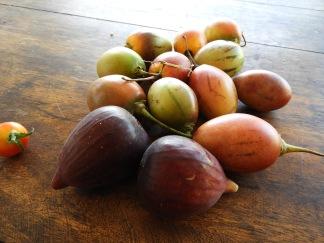 Tamarillo and figs