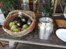 Today's harvest of fruit, veggies and milk