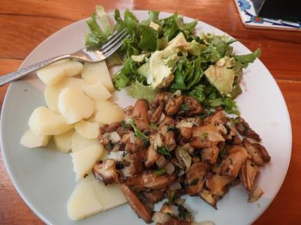 Potato, slippery jacks, salad