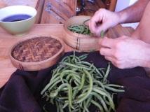 Beans #organicfarming