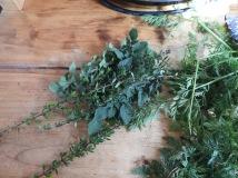 Oregano and thyme #organic